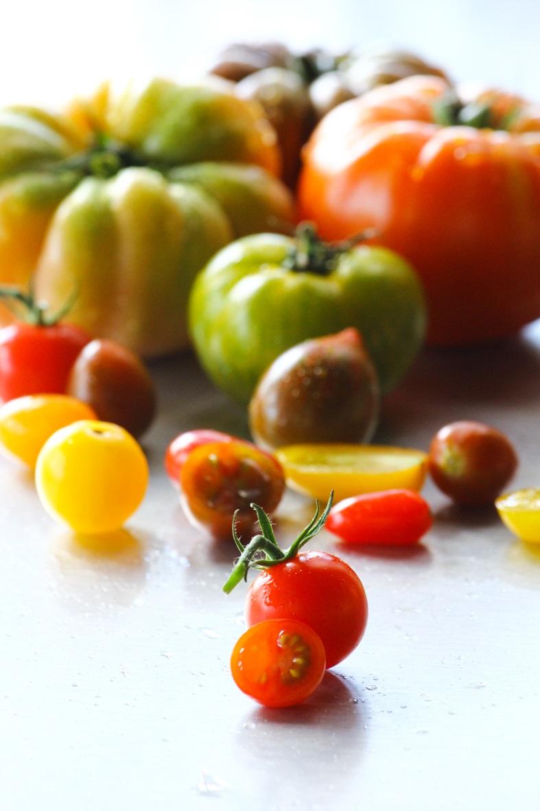 Tomates_1577